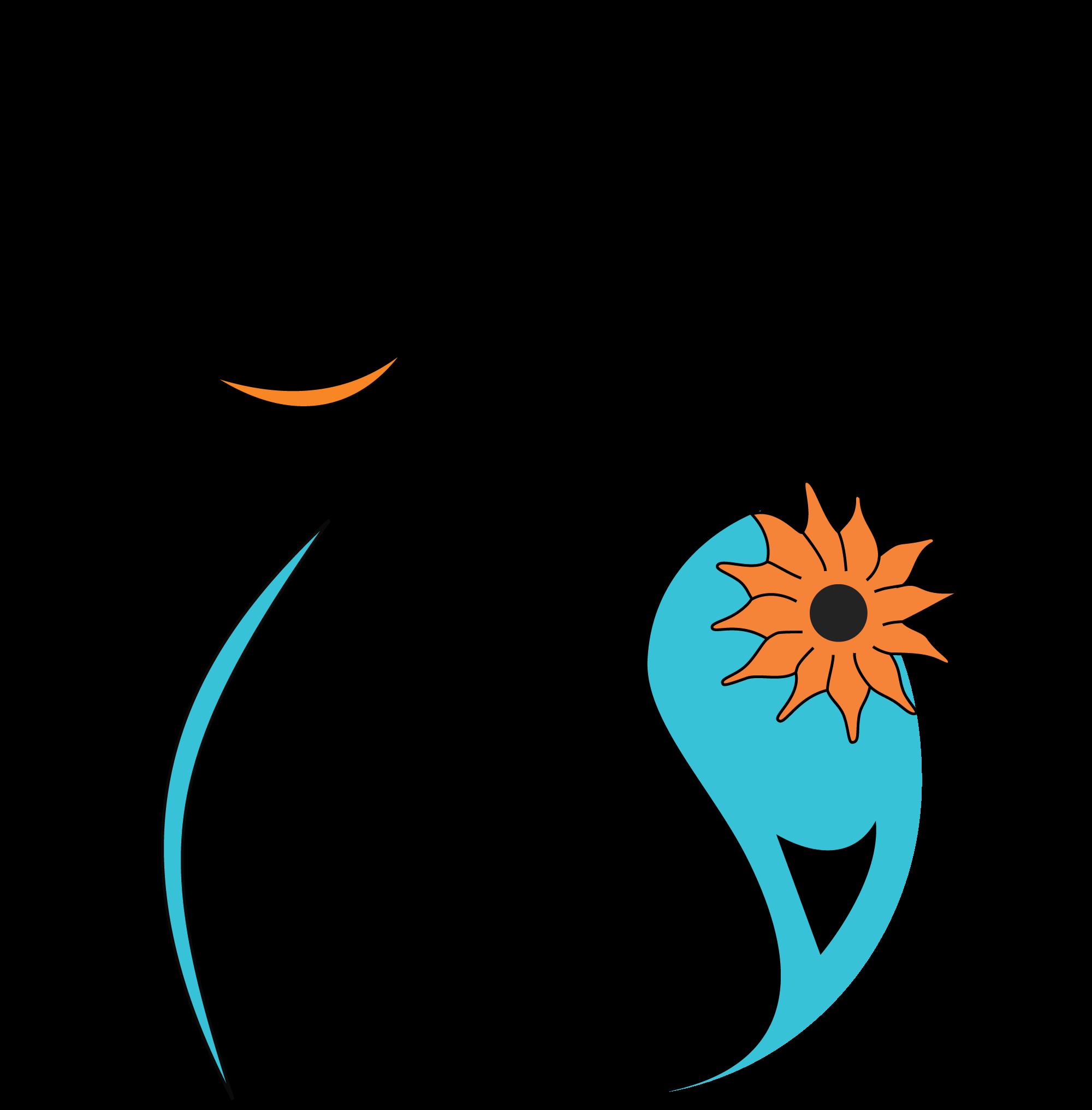 logo turquoisedomes com - شرکت توریستی TurquoiseDomes