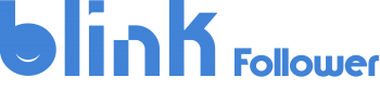 blinkFollowerLogo